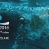 Diretta streaming e copertura televisiva dello Swimming Cup 2016 di nuoto