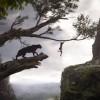 Trailer e colonna sonora del film Il Libro della Giungla